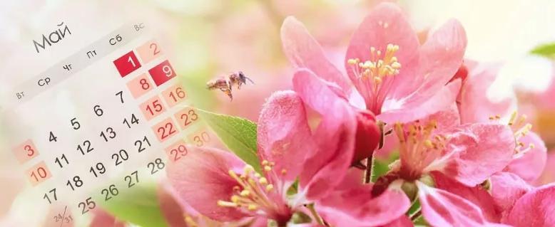 Майские праздники - график работы
